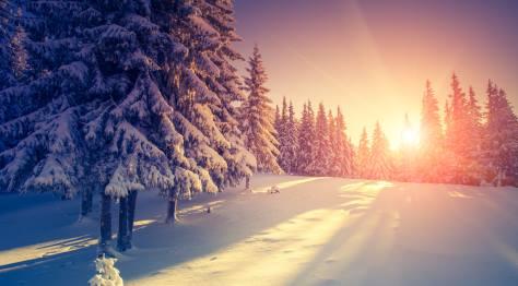 Belgian Ardennes Winter
