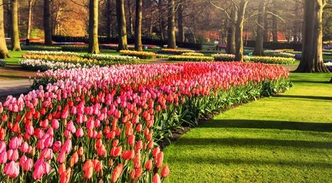 Garden of Europe