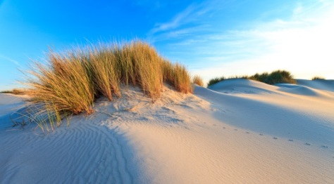 Drunen National Park, Dunes of Loon