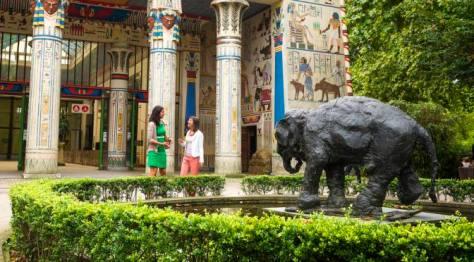 Antwerp Zoo Flanders