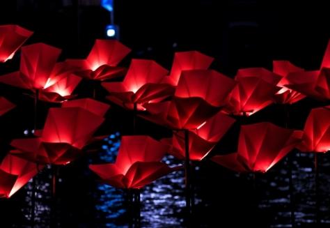 Amsterdam Light Festival - Julio Greff